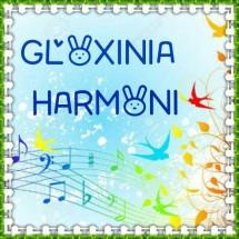 Gloxinia Harmoni