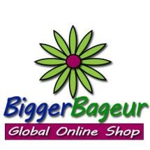 Logo Bigger Bageur