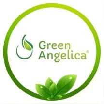 GREEN ANGELICA SERUM