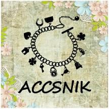 Accsnik