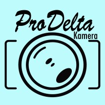 Logo prodelta