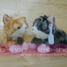 smb shop