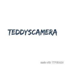 Logo teddyscamera
