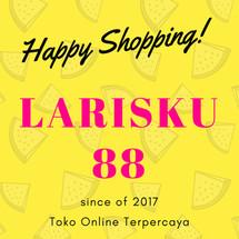 Logo larisku88