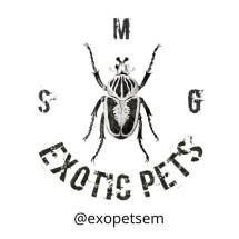 Exotic Pet Semarang