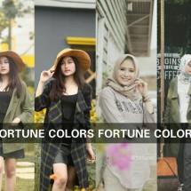 Logo Fortune Colors