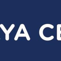 Logo JayaCell88