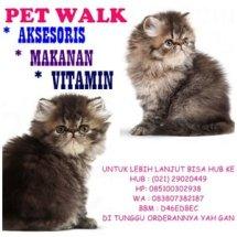toko petwalk