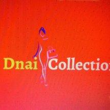 DnaiCollections