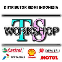 Logo TSWorkshop