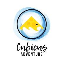 Cubicus Adventure