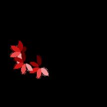 Logo Grocera Shop