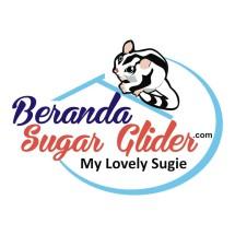 Beranda Sugar Glider