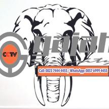 Gajah CCTV