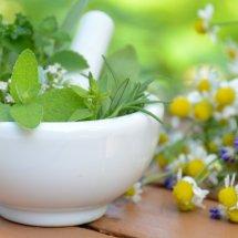 Vit Herbal