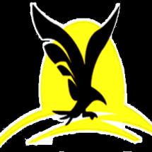 Logo TokoES
