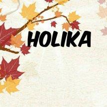 Logo holikastore