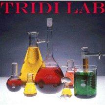 Logo Tridi Lab