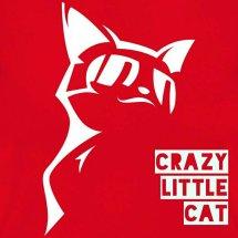 Crazy Little Cat