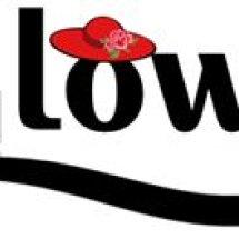 Iglow Olshop