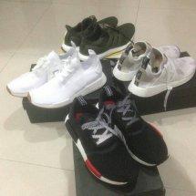 sneakershy