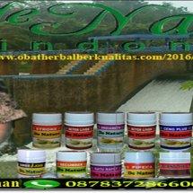 Logo obat herbal khusus wasir