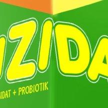 gizidat Logo