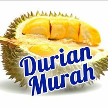 Logo Durian Murah