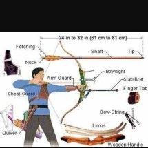 archery archery