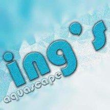 Ings Aquascape (ings)