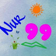 3_Nur99