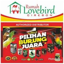 Rumah Love Bird