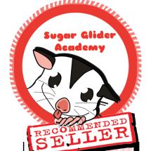 Sugar Glider Academy