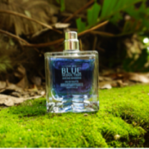 Hardnov Parfum