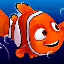 Nemo's Shop