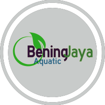 BeningJaya Aquatic