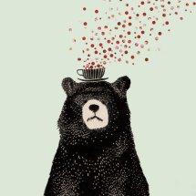 BearBearStore