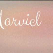 the marviel shop