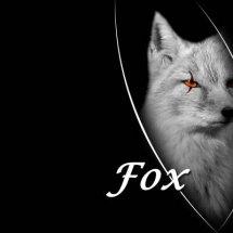 Silver Fox Store