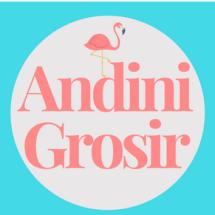 Logo ANDINI GROSIR