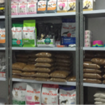Lyn's pet store