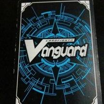 vanguard card Q