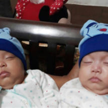 Oryza twins baby