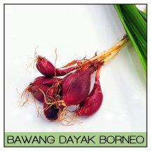 Bawang-Dayak-Borneo