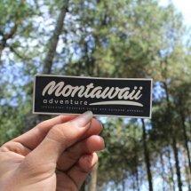 Montawaii Adventure