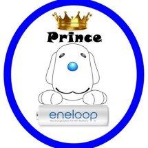Logo Prince Eneloop