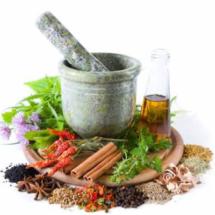 Logo herballicious