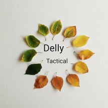 Logo Delly_Tactical