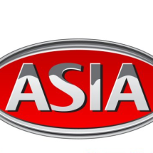 Logo Asia store online