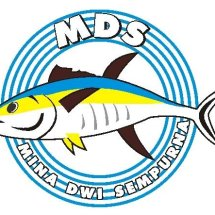 Logo MDS Seafood Supplier
